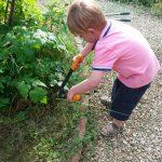 2-gardening